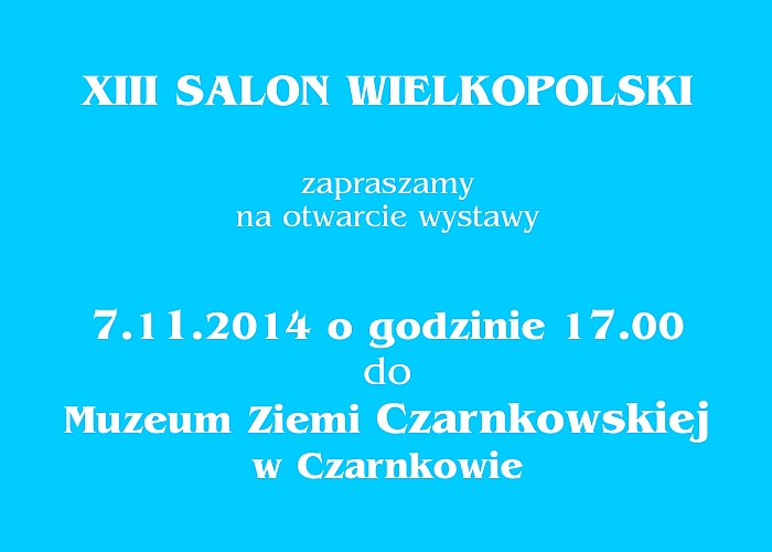Salon Wlkp XIII