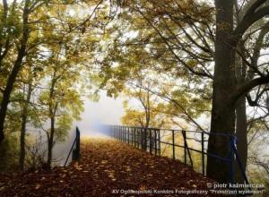 kazmierczak_piotr_jesienny_most.jpg