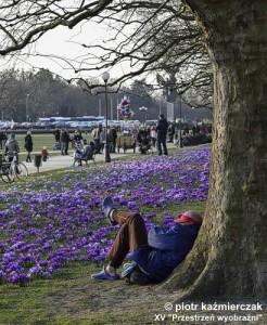 kazmierczak_piotr_powiew_wiosny.jpg